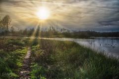 Griesbroek 3 (Geert E) Tags: landscape nature griesbroek sun sunset water pond creek clouds balen hulsen olmen