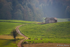 Countryside (darko.jakovac) Tags: nikon d750 nikond750 sigma 150600 sigma150600 contemporary telephoto dolenjska slovenija slovenia slowenien discover explore trip travel traveling relax view viewpoint ngc outdoor outdoors outside hiking adventure perspective activities roam visit environment explorers ecological nature landscape scenery scenic idyllic beauty beautiful season seasonal unique perfect superb magnificient stunning impressions outstanding popular colors colorful postcard wallpapper countryside rural farmland cultivated land green road magic