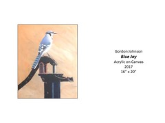 """Blue Jay • <a style=""""font-size:0.8em;"""" href=""""https://www.flickr.com/photos/124378531@N04/31707757667/"""" target=""""_blank"""">View on Flickr</a>"""