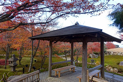 dsc00638-1_39051027594_o (tingalan5) Tags: japan osaka kyoto 2017 winter olypmus