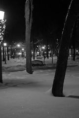 Quietness (Sylvain Ritchot) Tags: bw blackwhite city fujifilm night nightphoto park xt1 xf35mmf2rwr