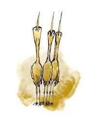 B159-365 one bird a day - Cartoon skratches 2 (www.doortje.nl) Tags: vogel pájaro uccello passarinho طائر oiseau птица birdo voël 鸟 doortjenl 1tekeningperdagnl pen ink inkt