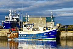 BF206 Sardonyx II - Fraserburgh Harbour - Aberdeenshire Scotland - 13/11/2018 (DanoAberdeen) Tags: danoaberdeen danophotography fraserburghscotland fraserburgh aberdeenscotland aberdeenshire trawlers trawlermen fishingtrawlers scottishtrawlers salmon haddock cod shellfish workboats tug northsea 2018 candid amateur autumn summer winter spring fraserburghharbour fish fishing fishingtown fishingport seafarers maritime whitefish whitefishport creels broch thebroch shipspotting shipspotters fishingboat northeast northeastscotland ship boat harbour lifeatsea shipbuilding marine northseafishing northseatrawlers bf206 sardonyx sardonyxii