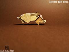 Juvenile Wild Boar - Barth Dunkan (Magic Fingaz) Tags: barthdunkan ecorigami origami origamiwildboar paperart paperfolding sanglier wildboar wildschwein หมูป่า 야생멧돼지 イノシシ 野豬 pig origamipig