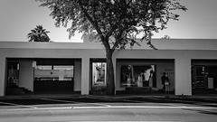 scottsdale 01482 (m.r. nelson) Tags: scottsdale arizona az america southwest usa mrnelson marknelson markinaz streetphotography urban artphotography newtopographic urbanlandscape thewest wildwest documentaryphotography blackwhite bw monochrome blackandwhite