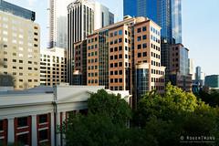 20190202-29-King Street Melbourne (Roger T Wong) Tags: 2019 australia melbourne rogertwong sel24105g sony24105 sonya7iii sonyalpha7iii sonyfe24105mmf4goss sonyilce7m3 victoria buidings summer trees