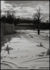 Reval-5 (TK@Pictures) Tags: theodorkierdorf tallinn estonia kadriorg castle park snow bnw blackandwhite leica monochrom m246 apo sky peaks tree baum himmel schnee gegenlicht katharinental reval schlos