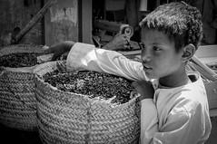 Egypte - Les épices (regis.grosclaude) Tags: épice picante spice chidren enfant child egypte bw black withe noiretblanc egitto egypt egito ägyten egupten regards yeux eyes bianco bwemotion marché market