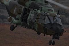 Francisco Francés Torrontera (2) (Francisco Francés Torrontera (Oroel)) Tags: famet fuerzasarmadasespañolas fuerzasaeromóvilesdelejércitodetierra eurocopter ejércitodetierra ejércitoespañol airbushelicopter airbushelicopternh90 aircraft airbus airbusnh90 natohelicopter nh90 nh90caiman caiman militaryhelicopters ministeriodedefensa bhelmaiii spanisharmyhelicopter spanish spanisharmy leonardohelicopters ngc nationalgeographic ng gettyimages