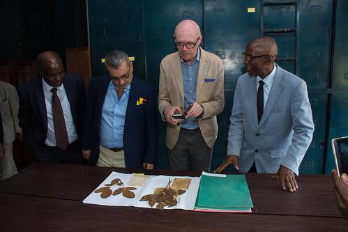 Yangambi herbarium