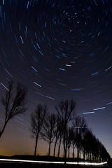Where is end of the road? #1 (mirosławkról) Tags: nikonnaturephotography night poland podlasie tree trees sky stars light whirlpool