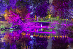 La magia del Natale / The magic of Christmas (Syon Park, London, United Kingdom)(Buon Natale!!!/Merry Christamas!!!) (AndreaPucci) Tags: syonpark enchantedwoodland london uk park night christmas andreapucci lake bridge