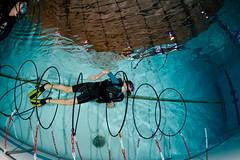 Téléthon 8 décembre 2018 - Baptêmes club de plongée Aubagne Plongée Passion (YackNonch) Tags: nauticamna7d plongéesousmarine nauticam ssysd1 téléthon2018 scubadiving ss scuba aubagne plongée charrel diving aubagneplongéepassion na7d app téléthon plongeur france piscinealainbernard dive lieu macro diver bouchesdurhône fr