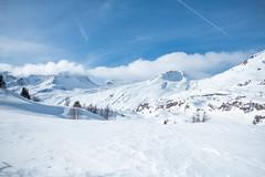 Simplonpass_26. Januar 2018-8 (silvio.burgener) Tags: simplonpass simplon switzerland adler schweiz swiss svizzera suisse hospiz sempione steinadler