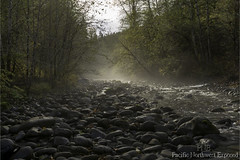 Gray Wolf River 2888 (All h2o) Tags: gray wolf river pacific northwest olympic peninsula mountains forest autumn fall tree trees landscape nature water fog mist clouds