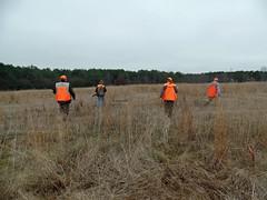 Alabama_Pheasant_Hunt_2017 4 (dever_brett) Tags: hunting alabama pheasant