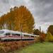 Haldern ICE3m 4610 trein 125 Köln Hbf