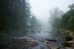 Nebelmorgen an der Thaya (richard.kralicek.wien) Tags: landscape waldviertel thaya foggy water