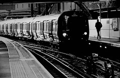_ _ _ at the last minute _ _ _ (christikren) Tags: blackwhite bw christikren city contrast london linescurves monochrome noiretblanc panasonic photography perspective urban human train rail station travel northbound platform candid lights track tube railway metropolitan line lines