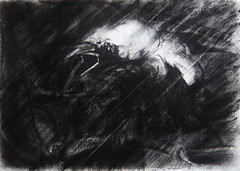 THE GUARDIAN (Sketchbook0918) Tags: crow bird avian animal wildlife portrait impressionistic impressionism drawing charcoal paper threatening guarding squawking raining storm danger warning nature
