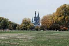 Autumn in Cologne (gambajo) Tags: autumn fall cologne köln classicchrome cathedral church dom park rheinpark kirche kathedrale herbst colors trees