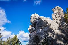 Madre e hijo (SantiMB.Photos) Tags: 2blog 2tumblr 2ig palomera otoño autumn nieve snow bosque forest pedraforca rocas rocks geo:lat=4221047195 geo:lon=174983943 geotagged saldes cataluna españa esp