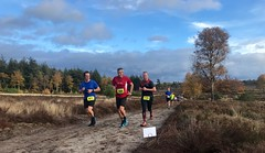 haarlerbergloop 10 km (41)