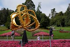 Rollercoaster (Dominic Sagar) Tags: amy arlen felsen friends sanfrancisco flowers sculpture california unitedstates us