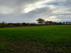 20181111 01 Eelde-Paterswolde (Sjaak Kempe) Tags: 2018 herfst autumn november sjaak kempe motorola moto g5 plus nederland the netherlands niederlande provincie drenthe eeldepaterswolde