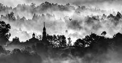 Ortoño (Noel F.) Tags: galicia galiza sony a7r a7rii ii fe 100400 ames ortoño neboa fog mencer sunrise gm