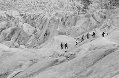 Glacier People (peterkelly) Tags: digital bw canon 6d gadventures bestoficeland iceland europe skaftafellnationalpark falljökullglacier glacier hike people hiking walking ice