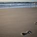 Footprints along the Beach
