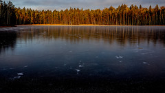 Sipoonkorpi National Park, Finland. (Esa Suomaa) Tags: esasuomaa finland lakes ice autumn winter nationalparks scandinavia suomi forest trees olympusomd
