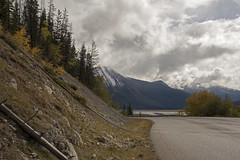 Maligne Lake Road - DSC_2183a (Markus Derrer) Tags: jaspernationalpark markusderrer september fall malignelakeroad mountains trees medicinelake