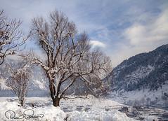 Swat, Pakistan (TARIQ HAMEED SULEMANI) Tags: sulemani supershot sensational winter tariq tourism trekking tariqhameedsulemani travel swat kalam