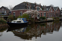 Abcoude in March (Julysha) Tags: abcoude river angstel 2014 d800e nikkor247028 reflection boats blossoming thenetherlands spring march magnolia village