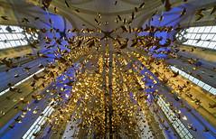 3333 x peace (Blende1.8) Tags: cityadvent münster muenster church kirche churches kirchen nrw gold golden interior sony sel1224g säulen pillar pillars columns windows fenster christmas peace frieden wideangle alpha ilce7rm2 a7rm2 a7rii details detail installation artinstallation 1224mm überwasserkirche light licht tauben pigeon pigeons dove perspective ceiling