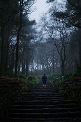 Rivington Terraced Gardens (nickcoates74) Tags: a6300 alpha chinesegardens chorley december fog ilce6300 lancashire rivington sony terracedgardens winter uk