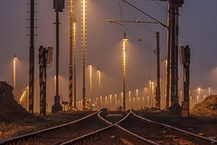 Trees of lamps (miroslav_benak) Tags: industrialarchitecture industrial heritage trains train railways railroad early morning dawn light lighting blue sky lamps trees columns fog house long exposures autumn tracks workers life working class oldrussianlense old russian lens jupiter37a exploration