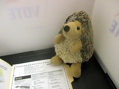 """HIIIIIIYYYAAAAAAHH!!!!"" With great enthusiasm, Abby the Hedgehog practices her right to vote! (Autistic Reality) Tags: takomaparkmiddleschool takomapark middleschool md maryland stateofmaryland usa us unitedstates unitedstatesofamerica america architecture building structure inside interior indoors education schools montgomerycounty dmv cityoftakomapark abbythehedgehog abby hedgehog travel mascot travelmascot election electionday generalelectionday generalelection 2018 votes voting"