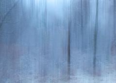 First snow for the winter (bill.d) Tags: abai associationforbehavioranalysisinternational icm kalamazoocounty michigan portage us unitedstates autumn fall intentionalcameramovement outdoor overcast snow throughtheofficewindow