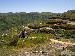 Electric Avenue (Wozza_NZ) Tags: belmont belmontregionalpark bamba bike cycle mountainbike flow flowtrail electricave electricavenue mtb singletrack wellington lowerhutt nz newzealand trail
