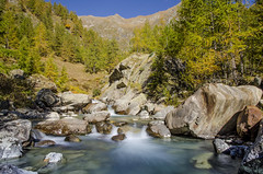 Lago dei Cavalli (Gabriele Grazioli) Tags: lago dei cavalli horse lake autunno autumn fall natura nature forest blu turchese acqua water fountain gold reflection riflessi larici piemonte antrona montanga mountain diga dam
