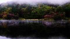 Autumn leaves of Nakathuna-ko Lake (chikuma_riv) Tags: japan nature landscape river lake mountain forest flower sunset sunrise spring summer autumn winter leaves