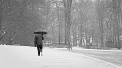 first snow (frax[be]) Tags: streetphotography street parc atmosphere 90mm fuji people outdoor landscape snow umbrella noiretblanc monochrome poetry fineart moody blackandwhite bw