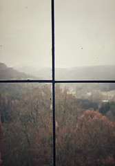 26/365 - Rear Window (efsb) Tags: dahn 2019inphotos schloss rheinlandpfalz wald forest iphone7plus 2019yip germany castle project365 26365 burgberwartstein