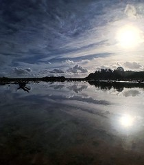 Feeling reflective (jonmacephotography) Tags: sunny landscape farmland symmetry reflections puddle water