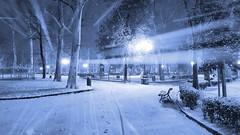 Piazza d'Azeglio (Go Ciop Go) Tags: firenze florence toscana tuscany italia italy neve snow nevicata snowfall inverno winter 2018 snowstorm blizzard night piazzadazeglio