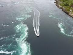 Norway. Saltstraumen maelstrom