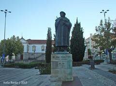 Estátua de Amato Lusitano em Castelo Branco (Sofia Barão) Tags: castelo branco beira baixa portugal